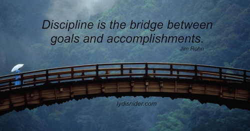 discipline-bridge