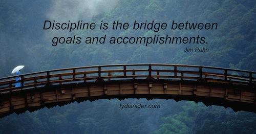 discipline-bridge