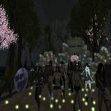 Shai Party9