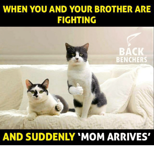 when-you-and-your-brother-are-fighting-back-benchers-and-14952967