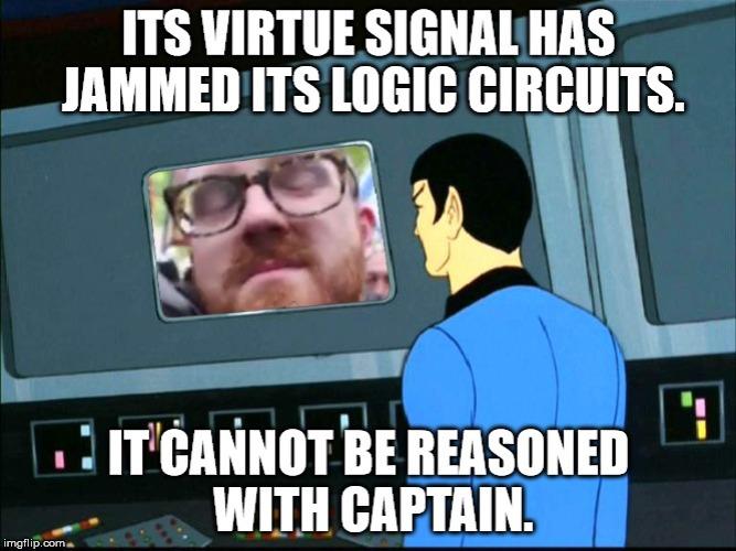 VirtueSignal23